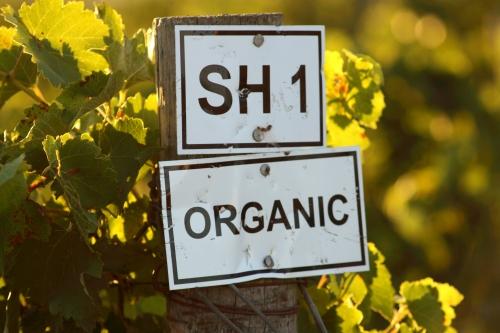Joostenberg Organic winery