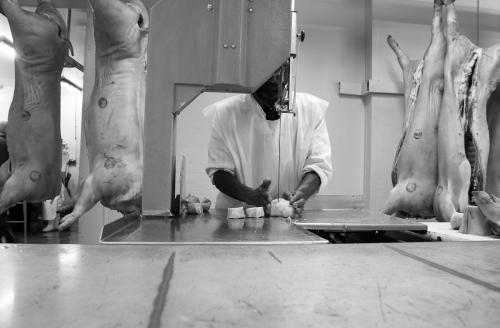 butchery-IMG_2686