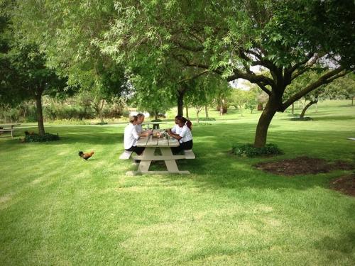 joostenberg-picnic-area